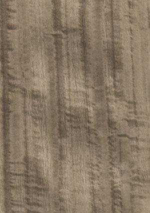 Dyed fig. eucacyptus - 1120