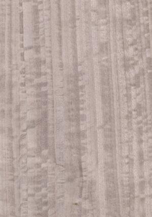 Dyed fig. eucacyptus - 1123