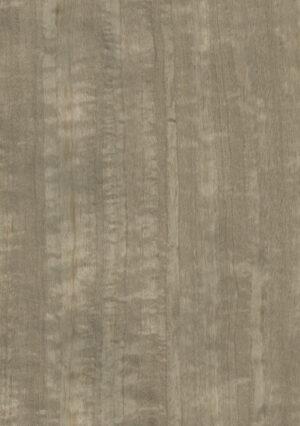 Dyed fig. eucacyptus - 1125