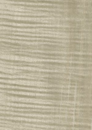 Dyed fig. maple light grey - 171