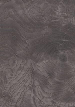 Dyed ash burl - 263