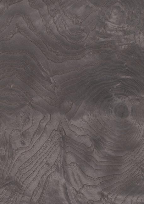 Dyed ash burl – 263 1